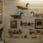 Ocracoke Preservation Museum Decoy Display