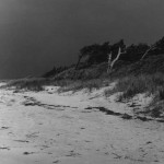 Springer's Point Canopy From Beach On Ocracoke Island - 1950s