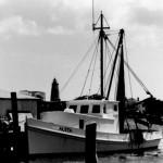 Aleta as a fishing boat