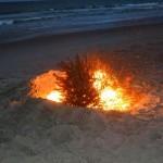 Beach Fire - 2014