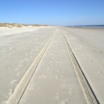 Beach Tracks On Ocracoke Island