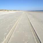 Beach Tracks On Ocracoke Island