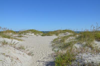 Ocracoke Island Dunes