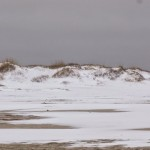 Ocracoke Island Beach In The Snow