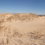 Beach - Behind The Dunes Photo Sphere