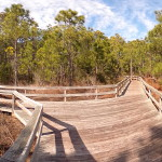 Hammock Hills Nature Trail Boardwalk Photo Sphere