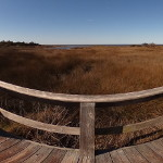 Hammock Hills Nature Trail Observation Deck Photo Sphere