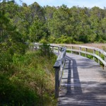 Hammock Hills Trail Boardwalk