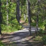 Hammock Hills Trail